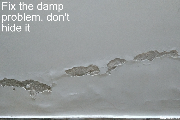 Fix the damp problem, don't hide it