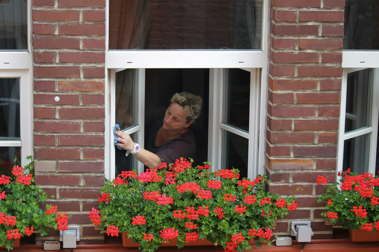 What are the benefits of clean windows