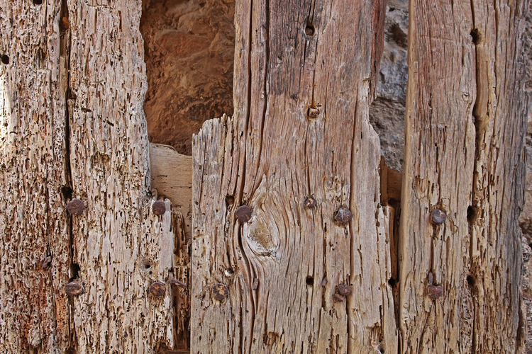 Can woodworm cause structural damage to the timbers