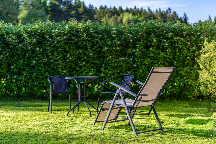What will help you to decide if a west facing garden is right for you