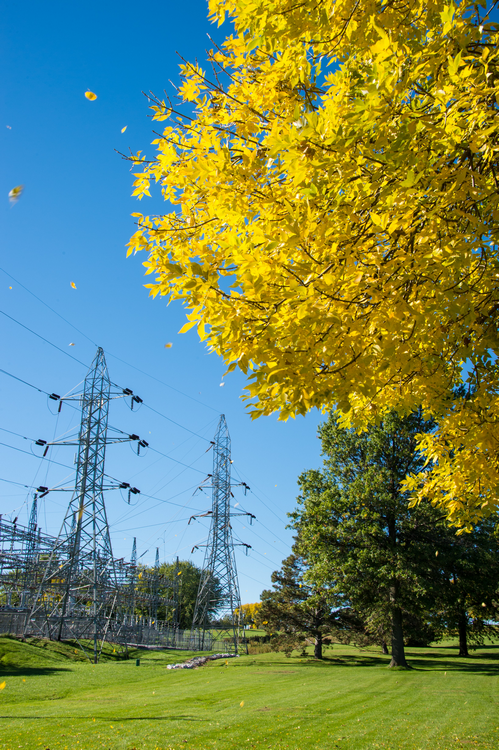 Do power lines reduce property value large